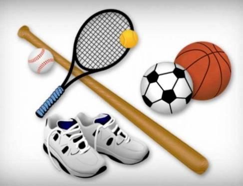 Саранск вошел в топ-10 городов по количеству спортшкол