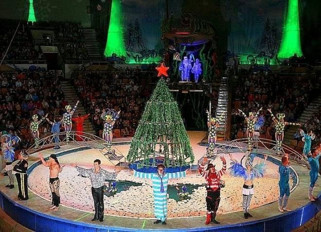 Жители Саранска проводят первые дни нового года в цирке на воде