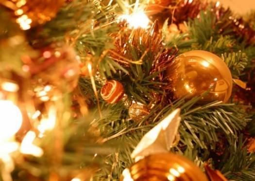 Через два месяца Саранск украсят новогодние ёлки
