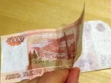 В Саранске выявили очередную фальшивку