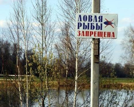 Прокуратура Мордовии признала незаконным запрет на ловлю рыбы в пруду