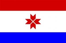 Мордовия отмечает годовщину принятия Конституции