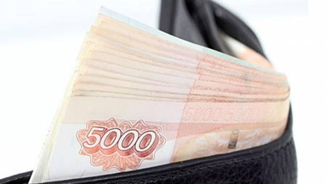 Два друга в Саранске нашли кошелек с 225 тыс рублей и отправились под суд