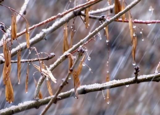В Мордовии температура за окном снова поднимется выше ноля