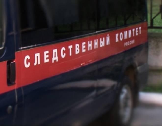 """""""Улётный"""" """"Шторм"""" в саранском парке: проводится доследственная проверка"""