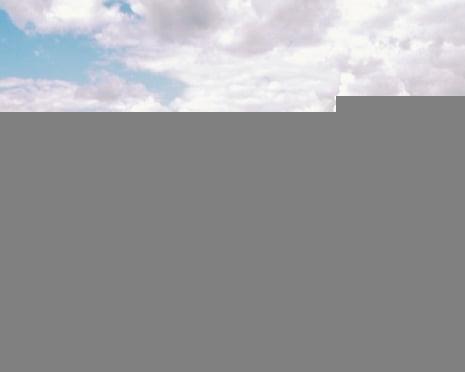 Мэр Саранска намерен озеленять город по современной концепции