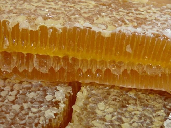 В Саранске пройдёт очередная ярмарка мёда