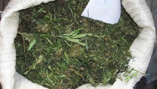 Уловом рыбака из Атемара стало больше 100 грамм марихуаны