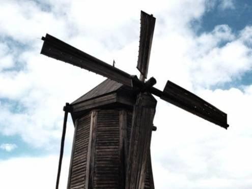 Саранские мастера спасают старинную мельницу в «Тарханах»