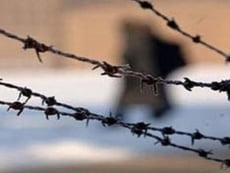 Заключенный мордовского Дубравлага заработал на петербуржце