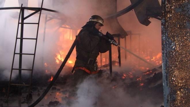 Сельчанин в Мордовии получил ожоги, спасая собственный дом