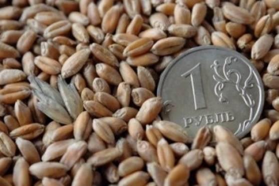 Аграриев Мордовии поддержат рублем