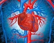 Жителей Мордовии «косят» болезни системы кровообращения