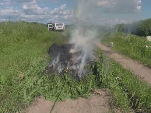 За две недели в Мордовии выявили 28 наркопреступлений