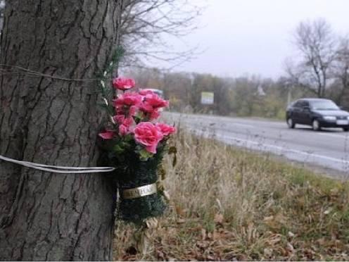 В Мордовии водитель иномарки насмерть сбил женщину на обочине