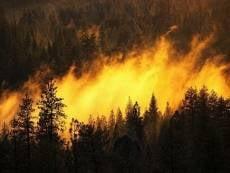 """В Мордовии может повториться """"горячее"""" лето 2010 года"""