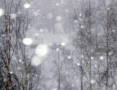 На Мордовию надвигается метель