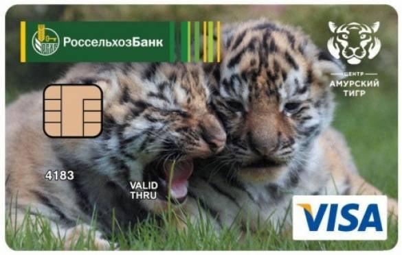 Мордовский филиал Россельхозбанка эмитировал более 1000 платежных карт «Амурский тигр»