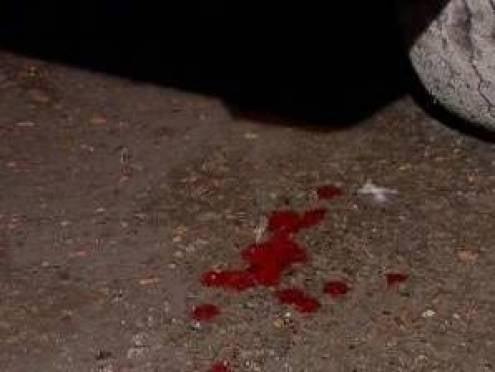 Полиция Мордовии разыскивает свидетелей смертельного ДТП