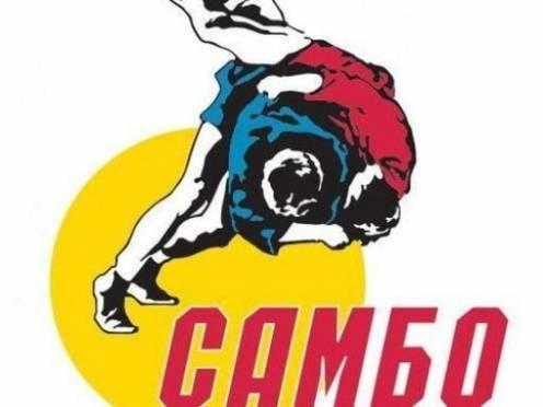 В Саранске пройдет турнир четырех городов по самбо