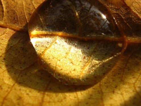 В «обезвоженную» Масловку возвращается вода