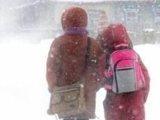 В Мордовии школьники возвращаются на занятия после морозов