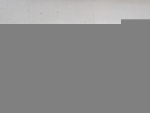 Житель Мордовии пришел в полицию с пистолетом времен ВОВ