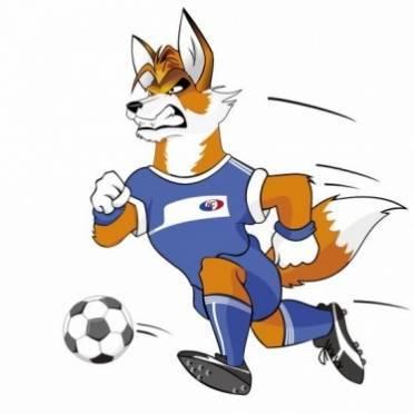 Футбольная «Мордовия» озадачилась созданием талисмана команды