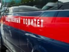 Жителя Мордовии могут наказать за фото обнаженной девочки в Сети