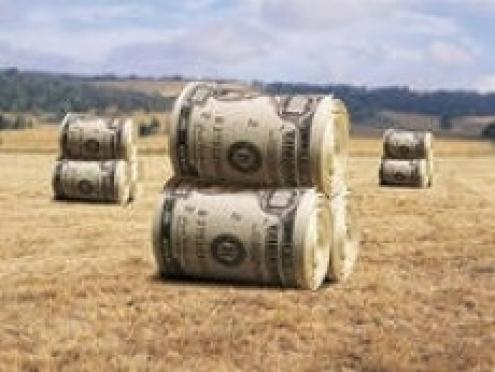 Аграрии Мордовии не засеют поля без кредитов