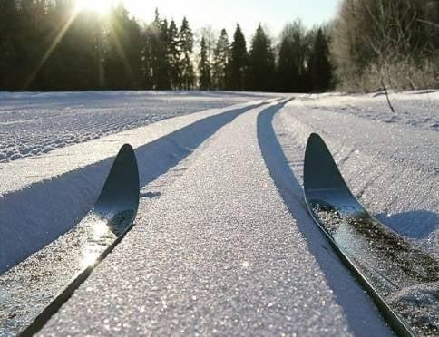 Жителей Мордовии приглашают на Рождественскую лыжню