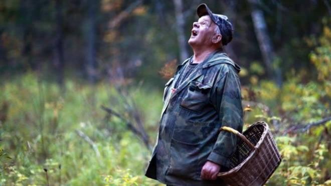 Заблудившиеся нижегородские грибники дошли до Мордовии