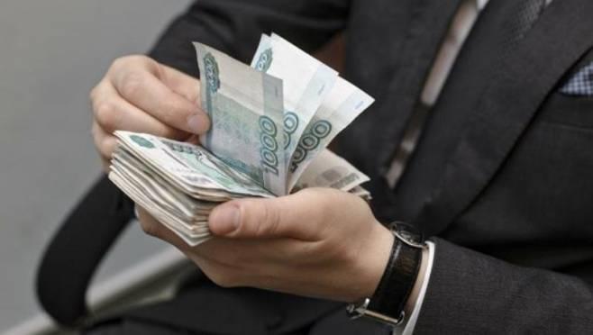 Самый главный чиновник села в Мордовии «уменьшил» свои доходы в 4 раза ради путёвки