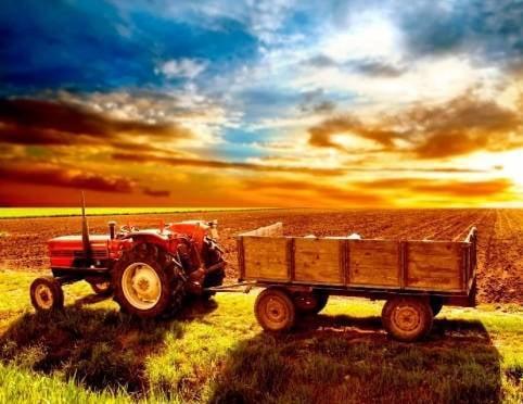Перед аграриями Мордовии вновь поставлены амбициозные задачи