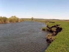 В Мордовии на берегу реки откопали труп женщины