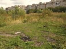 В Саранске проведут ревизию пустующих земель
