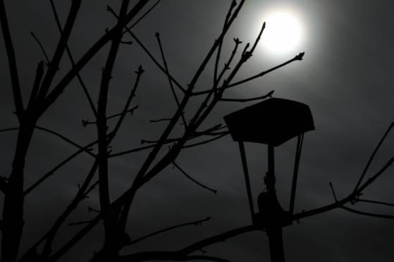 В Мордовии вандал погрузил во тьму Аллею молодоженов
