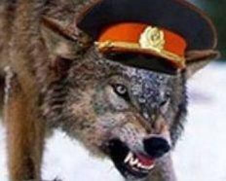 В Мордовии перед судом предстанет группа «оборотней в погонах»