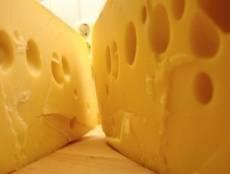 Мордовский сыр получил высокую оценку в Сочи