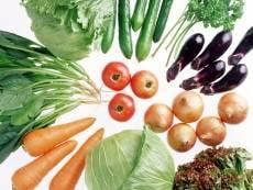 Плодоовощной центр в Мордовии откроется осенью