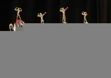 Горы мышц и осиные талии: в Саранске прошел Чемпионат по бидибилдингу и фитнесу