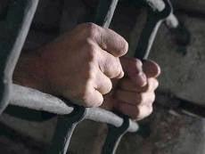 Жителя Мордовии, обвиняемого в жестоком убийстве матери двоих детей, оставили под стражей