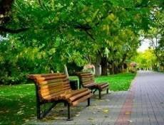 Саранские парки пройдут санобработку перед ЧМ-2018