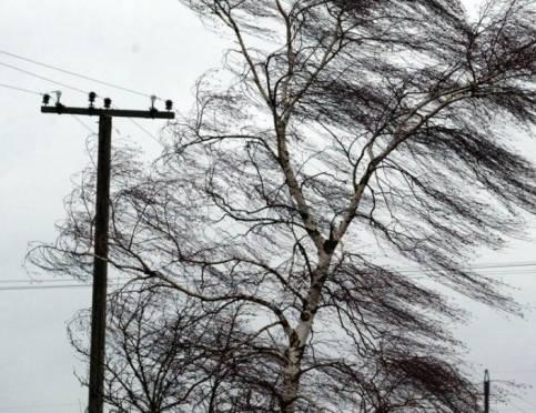 На Мордовию обрушится шквалистый ветер