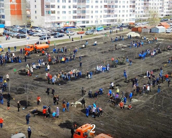 В минувшие выходные в Саранске было посажено 1500 деревьев