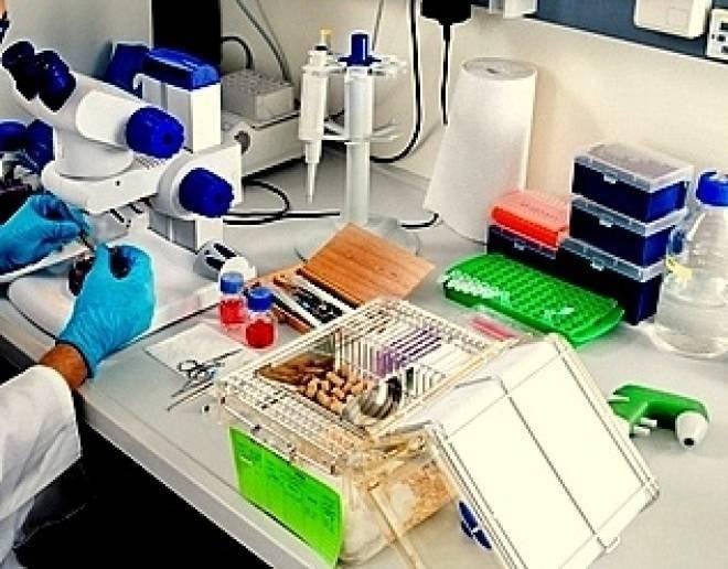 Новый виварий в Саранске поможет проводить научные исследования