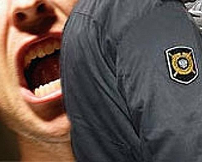 Житель Мордовии осужден за оскорбление представителя власти