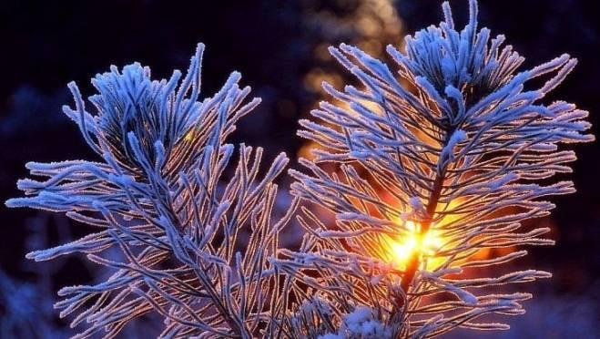 В Мордовии к Старому новому году похолодает до -17°С