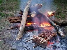 Костры в лесах Мордовии «подорожали»