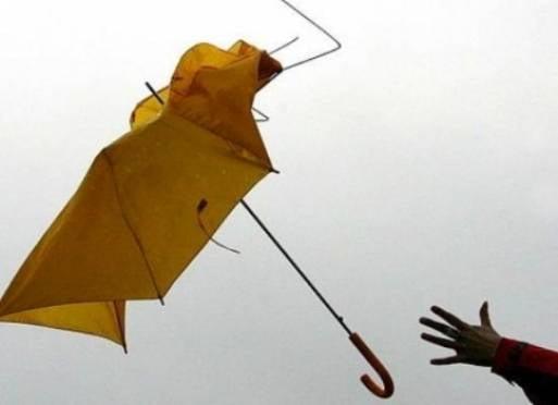 МЧС: жителей Мордовии ждёт порывистый ветер и мокрый снег